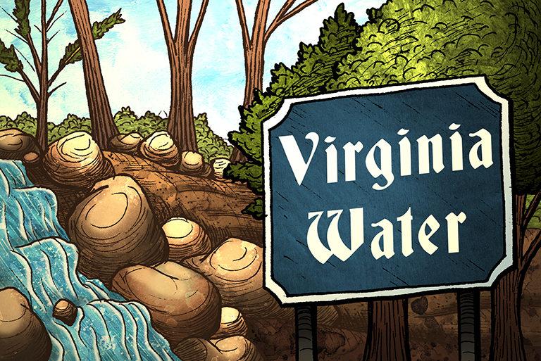 Visit Egham - illustrations-Virginia Water-768